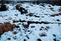 雪の野原 20021001159| 写真素材・ストックフォト・画像・イラスト素材|アマナイメージズ