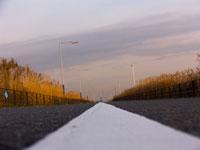 道路のセンターライン