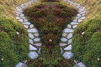 シンメトリーの石庭