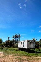 コンテナハウスと椰子の木と青空 20021001280A| 写真素材・ストックフォト・画像・イラスト素材|アマナイメージズ