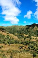 椰子の木と山肌と青空 20021001303A| 写真素材・ストックフォト・画像・イラスト素材|アマナイメージズ