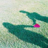 芝生に置いたハートとカップルの影