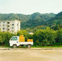 果樹園と軽トラック 20021003859| 写真素材・ストックフォト・画像・イラスト素材|アマナイメージズ