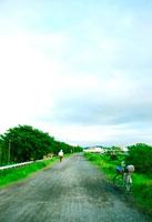 多摩川沿いの道