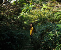 山の中に立つ女性