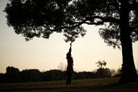 背伸びをして木の葉に触れる女性
