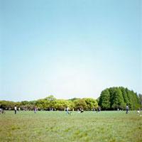 芝生の広場 20021005419| 写真素材・ストックフォト・画像・イラスト素材|アマナイメージズ