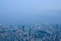 東京都市の夕景