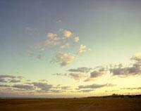 朝焼けの空と広い砂浜 20021005665| 写真素材・ストックフォト・画像・イラスト素材|アマナイメージズ