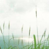 海岸より望む海の晴れ間 20021005683| 写真素材・ストックフォト・画像・イラスト素材|アマナイメージズ