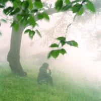 霧の森に座る男性