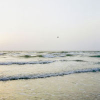 夕暮れの日本海と飛んでいく鳥 20021005788| 写真素材・ストックフォト・画像・イラスト素材|アマナイメージズ