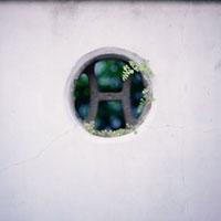 白い壁の丸い枠に生えた草 20021005789| 写真素材・ストックフォト・画像・イラスト素材|アマナイメージズ