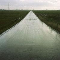 雨に濡れて光る一本道