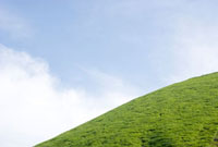 大室山と青空