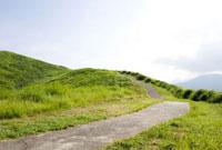大室山の山道