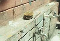 手洗い場のレンガとタワシとカマキリ