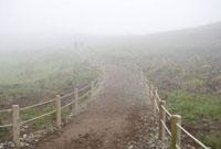 霧の中を歩く人