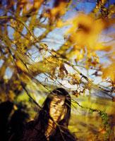 枯れた木と女性