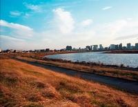 赤く染まる枯れ葉と川 20021006221| 写真素材・ストックフォト・画像・イラスト素材|アマナイメージズ