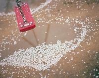 赤いブランコと水溜りの桜の花びら 20021006482| 写真素材・ストックフォト・画像・イラスト素材|アマナイメージズ