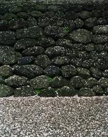 石垣と散り積もった桜の花びら