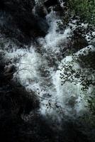 激流と緑の紅葉 20021006648| 写真素材・ストックフォト・画像・イラスト素材|アマナイメージズ