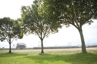 平城京跡朱雀門と近鉄奈良線の電車
