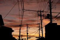 夕焼けと電信柱