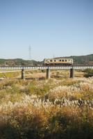 ススキの中を走る因美線の電車 20021007005| 写真素材・ストックフォト・画像・イラスト素材|アマナイメージズ