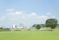 淀川河川公園から望む枚方市の街並み