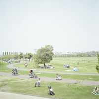 公園と鯉のぼり 20021007121| 写真素材・ストックフォト・画像・イラスト素材|アマナイメージズ