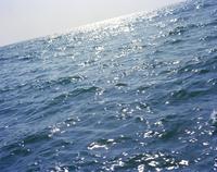 晴れた日の光が反射する海 20021007159| 写真素材・ストックフォト・画像・イラスト素材|アマナイメージズ