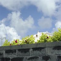 沖縄の家の屋根とシーサー 20021007172| 写真素材・ストックフォト・画像・イラスト素材|アマナイメージズ