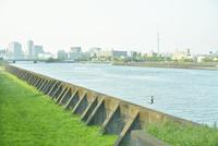 隅田川と飛び立つ鳩とスカイツリー