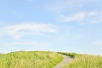 大室山の道と空