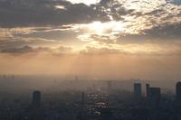 東京のビルと夕日 20021007379| 写真素材・ストックフォト・画像・イラスト素材|アマナイメージズ