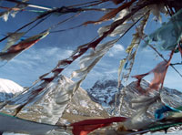 Looking through prayer flags