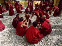 Monks debating on courtyard