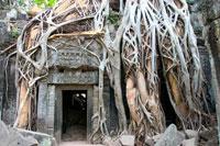 Ruined temple of Ta Prohm