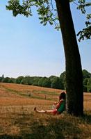 Hampstead Heath mid summer
