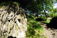 Slate rock formation on footpath