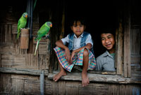 Khasi tribe with pet green parrots