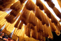 Safron dyed cloth hanging up to dry in souks of Marrakesh