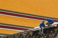 Men repairing roof of Wat Pho temple