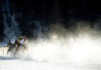 Falat racers 20023003851| 写真素材・ストックフォト・画像・イラスト素材|アマナイメージズ