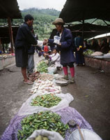 Chillies and vegetables in main market
