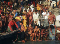 Pilgrims bathing at the Sonepur Mela
