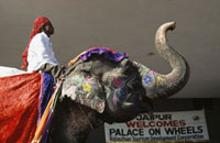 Elephant greeting Palace on wheels