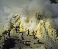 Workers in a sulphur mines